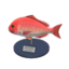 Red Snapper Model