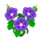 Violet Morning Glory PC Icon.png