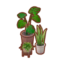 Greenhouse Planter Set PC Icon.png