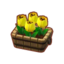 Potted Yellow Tulips