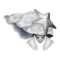 Silver Glass Hermit Crab PC Icon.png
