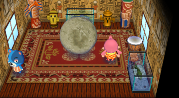 Interior of Kody's house in Animal Crossing: City Folk