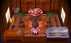 Cousteau's house interior
