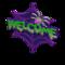 Spider Doorplate (Purple) NH Icon.png