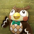 Blathers's Poster NH Texture.png