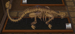 CF Ankylosaurus Museum.png