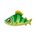 Yellow Perch PC Icon.png