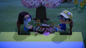 A screenshot of a nice picnic.