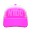 Mesh Cap (Pink) NH Icon.png