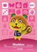 031 Sheldon amiibo card NA.png