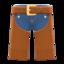 Western Pants