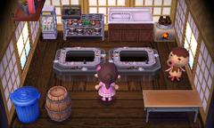 Zucker's house interior