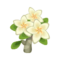 White Plumeria PC Icon.png