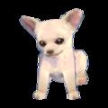 Chihuahua Model CF Model.png