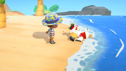 NH Pirate Gulliver Free Summer Update.png