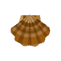Scallop Shell PC Icon.png
