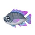 Tilapia PC Icon.png