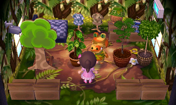 Interior of Sly's house in Animal Crossing: New Leaf