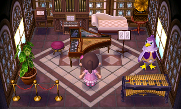 Interior of Becky's house in Animal Crossing: New Leaf