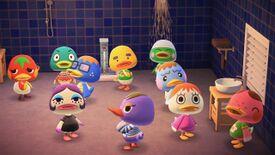 NH Ducks.jpg