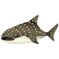 Whale Shark PC Icon.png