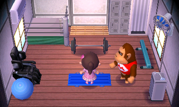 Interior of Louie's house in Animal Crossing: New Leaf