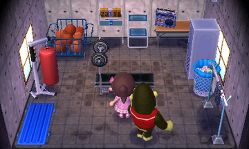 Interior of Al's house in Animal Crossing: New Leaf