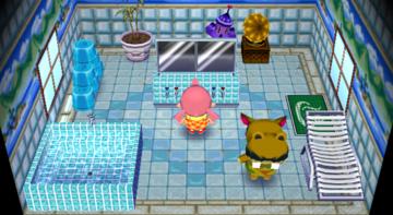 Interior of Harry's house in Animal Crossing: City Folk