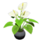 Anthurium Plant (White) NH Icon.png