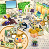 Natural Salon Set PC.png