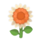 White Sunflower PC Icon.png