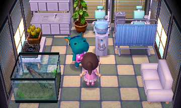 Interior of Bertha's house in Animal Crossing: New Leaf