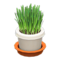 Cat Grass (White) NH Icon.png