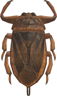 Giant Water Bug NH.png