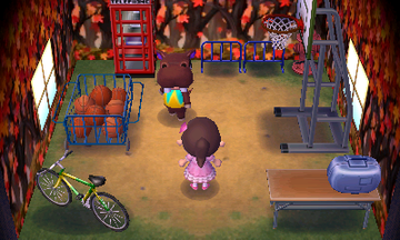 Interior of Biff's house in Animal Crossing: New Leaf
