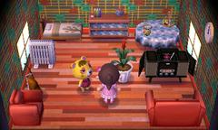 Tammy's house interior