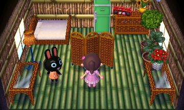 Interior of Cole's house in Animal Crossing: New Leaf