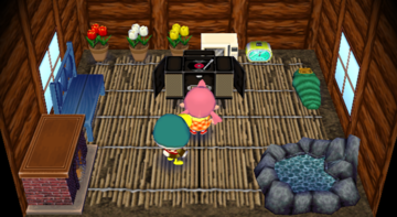 Interior of Drake's house in Animal Crossing: City Folk