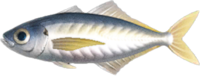 Horse Mackerel NH.png