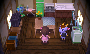 Interior of Kidd's house in Animal Crossing: New Leaf