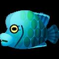 Napoleonfish PC Icon.png