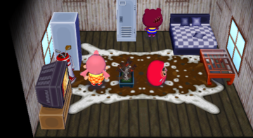 Interior of Rasher's house in Animal Crossing: City Folk