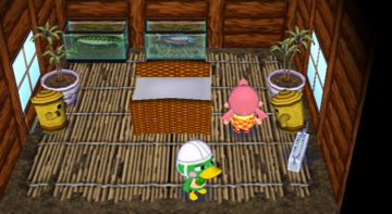 Interior of Scoot's house in Animal Crossing: City Folk