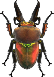 Rainbow Stag NH.png