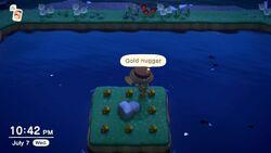 Mystery Island 24 Gold Nuggets NH.jpg