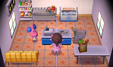 Interior of Candi's house in Animal Crossing: New Leaf