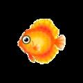 Orange Discus PC Icon.png