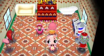 Interior of Gala's house in Animal Crossing: City Folk