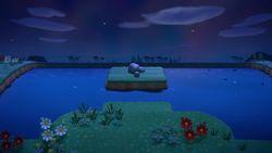 Mystery Island 24 NH.jpg