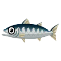 Great Barracuda PC Icon.png